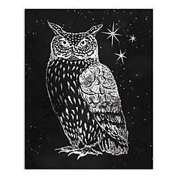 Designs Direct Grey Night Owl 16-Inch x 20-Inch Canvas Wall Art