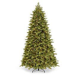 National Tree Company Pre-Lit Princeton  Fraser Fir Christmas Tree
