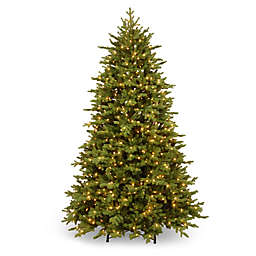 National Tree Company 7.5-Foot Pre-Lit Princeton Deluxe Fraser Fir Christmas Tree