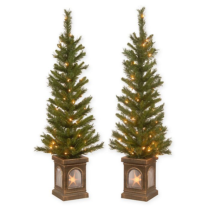 new concept 8e136 35386 National Tree Company® 4-Foot Pre-Lit Lehigh Valley Pine ...