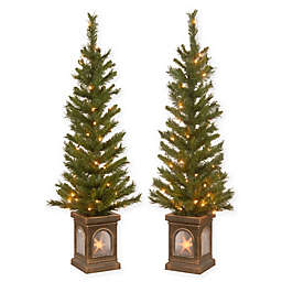 National Tree Company® 4-Foot Pre-Lit Lehigh Valley Pine Entrance Trees (Set of 2)