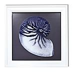 Reverse Shell 18-Inch Glass Wall Art
