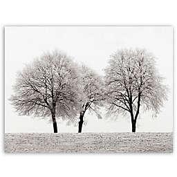 Masterpiece Art Gallery Ilona Wellmann 3 Trees Canvas Wall Art in White