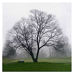 Masterpiece Art Gallery Mary Campagna Tree Solo Canvas Wall Art