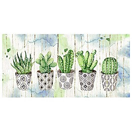 Potted Succulents on Wood Canvas Wall Art