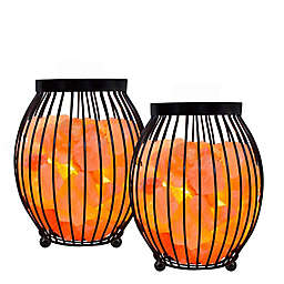 Himalayan Glow Oval Style Salt Night Lamps (Set of 2)