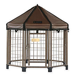Advantek 3-Foot Pet Gazebo in Aztec Gold