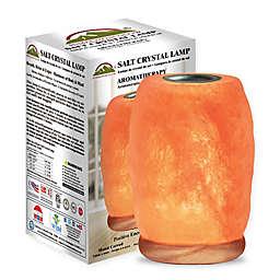 Himalayan Glow Hand Carved Aroma Salt Lamp