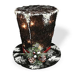 National Tree Company® Black Hat Holiday Decor