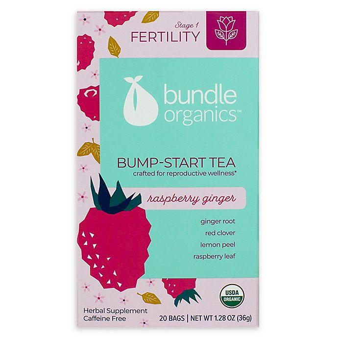 Alternate image 1 for Bundle Organics™ 20-Count Raspberry Ginger Bump-Start Tea