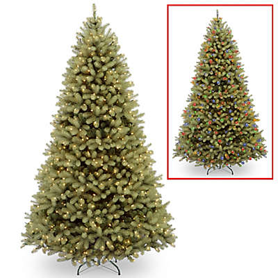 National Tree Company® Downswept Douglas Fir Pre-Lit Christmas Tree