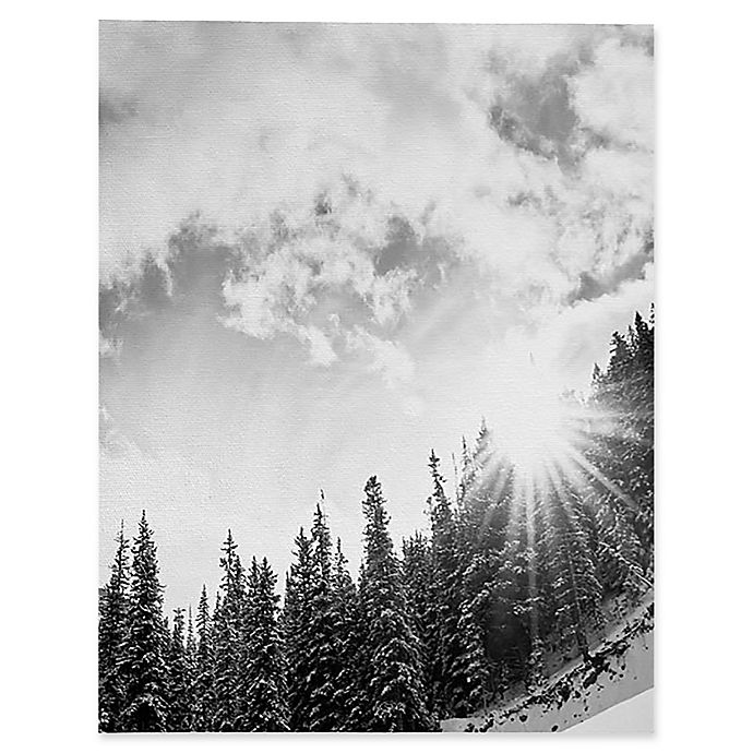 Alternate image 1 for Deny Designs Bird Wanna Whistle White Mountain Canvas 8-Inch x 10-Inch Wall Art in Black