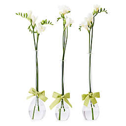Two's Company® Teardrop Vases with Ribbon (Set of 3)