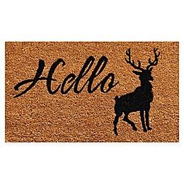 Calloway Mills Elk Hello 17\