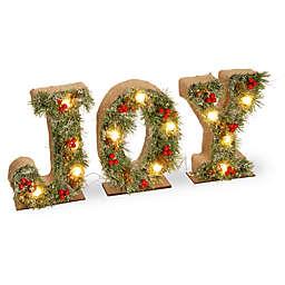 """National Tree Company® 27-Inch """"Joy"""" LED Holiday Decor"""