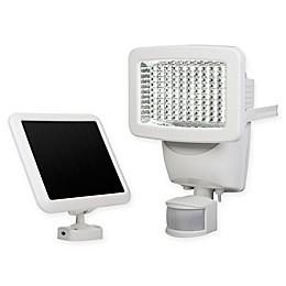 100 LED Solar Motion Light  in White