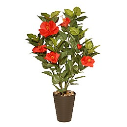 National Tree Company® 22-Inch Artificial Hibiscus Plant in Ceramic Pot