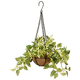 National Tree Company® 9-Inch Artificial Pothos Hanging Plant in Basket