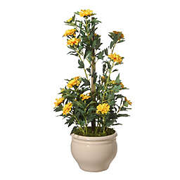 National Tree 20-Inch Potted Zinnia Flowers in Yellow