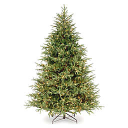 National Tree Company® 6.5-Foot Frasier Grande Christmas Tree with Dual Color Lights