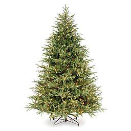 National Tree Company® 6.5-Foot Frasier Grande Christmas Tree with Dual Color Lights