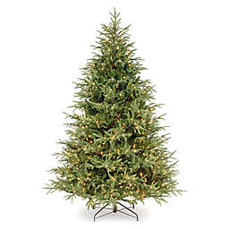 National Tree Company Dual Color® 7-Foot Pre-Lit Frasier Grande Artificial Christmas Tree