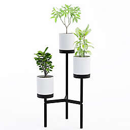 Planters & Plant Stands | Bed Bath & Beyond