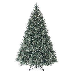National Tree Company Pre-Lit Douglas Blue Fir Christmas Tree