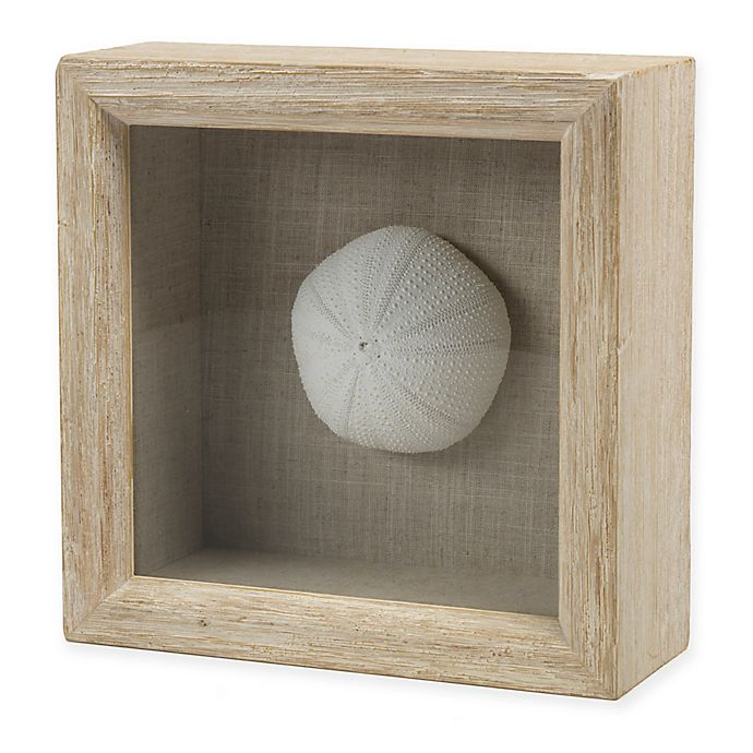 Alternate image 1 for Sea Urchin Shadow Box Sculpture