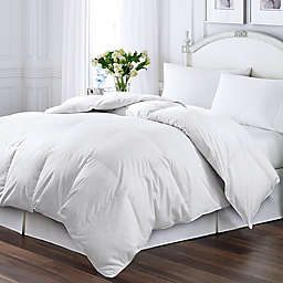 Kathy Ireland® Essentials Down & Feather-Filled Twin Comforter in White