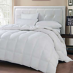 Oslo Goose and Feather Down Comforter