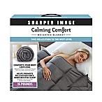 Sharper Image® Calming Comfort 15 lb. Weighted Blanket in Grey