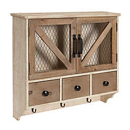 Kate and Laurel™ Hutchins Decorative Wall Storage Cabinet