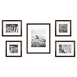 5-Piece Gallery Picture Frame Web in Walnut