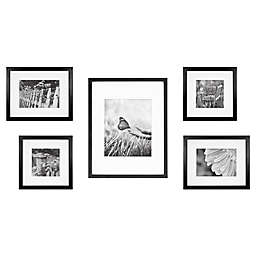 5-Piece Gallery Picture Frame Web in Black