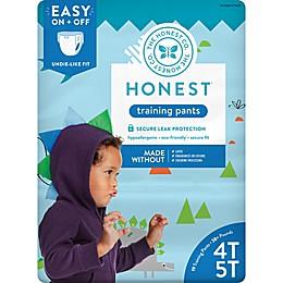 Honest Size 4-5T 19-Pack Training Pants in Dinosaur Pattern