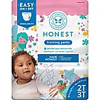 Honest Size 2-3T 26-Pack Training Pants in Fairy Pattern