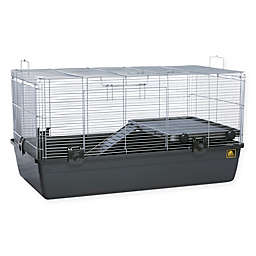 Prevue Pet Products Universal Small Animal Home in Black