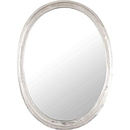 Raymee 17-Inch x 23-Inch Irregular Framed Wall Mirror in Nickel