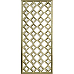 Cythera 21-Inch x 48-Inch Rectangle Framed Wall Mirror in Champagne