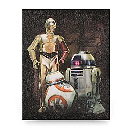Star Wars™ Resistance Droids Coated Canvas Wall Art