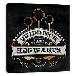 Harry Potter™ Quidditch Board Canvas Wall Art