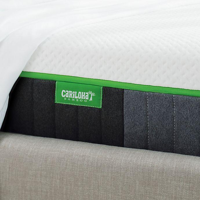 Alternate image 1 for Cariloha® 10-Inch Luxury Memory Foam Mattress