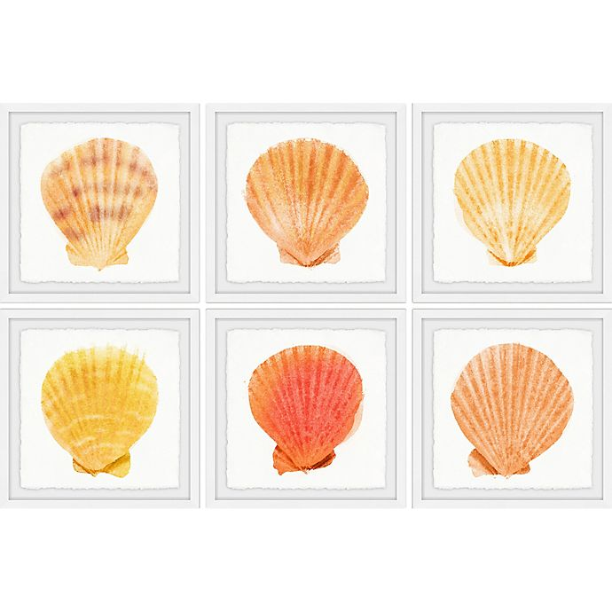 Alternate image 1 for Marmont Hill Sea Shells Wonder II 36-Inch x 24-Inch Framed Hexaptych Wall Art