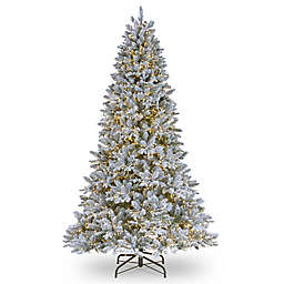 National Tree Company® Iceland Fir Christmas Tree with Clear Lights