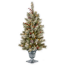 National Tree Company® 4-Foot Snowy Bristle Berry Entrance Tree with Clear Lights
