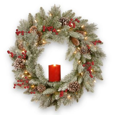 National Tree Company 174 24 Inch Snowy Bristle Berry Wreath