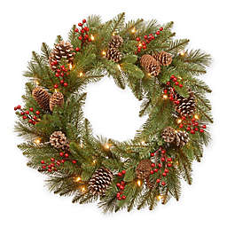 National Tree Company® 24-Inch Bristle Berry Wreath with Warm White Lights