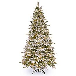 National Tree Company 6.5-Foot Everest Fir Pre-Lit Artificial Christmas Tree
