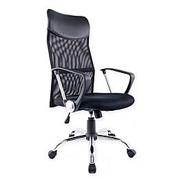 Brassex Inc Swivel Office Chair in Black